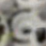 Distribuidor de produtos de skate